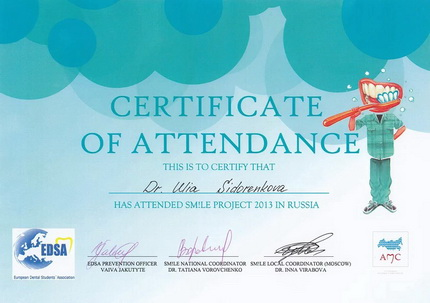 Certificate of attendance 'Smile project 2013 in Russia'